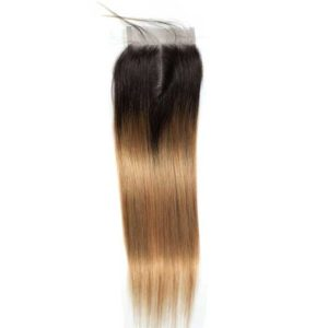 Ombre-Peruvian-Hair-weave2